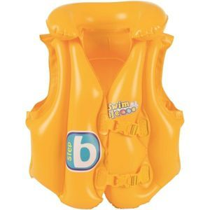 https://www.zavodni-lyze.cz/images/products/bestway-swim-vest-step_1.jpg